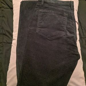 Loft black modern straight leg Jean like new